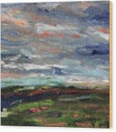 Light Upon The Marsh Wood Print