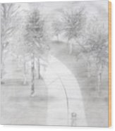Lighted Pathway Wood Print