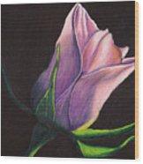 Lighted Rose Wood Print