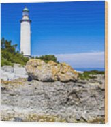 Lighthouse And Rocks Wood Print