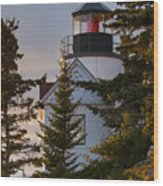 Lighthouse At Bass Harbor Wood Print