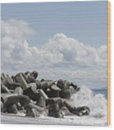 Lighthouse By The Bay Wood Print