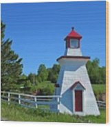Lighthouse Landscape Two Wood Print