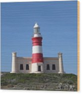 Lighthouse Of Agulhas Wood Print
