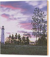 Lighthouse On A Landscape, Tawas Point Wood Print