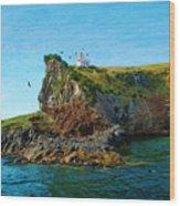 Lighthouse On Cliff Dunedin New Zealand Wood Print