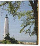 Lighthouse Summer Wood Print