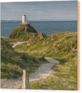 Lighthouse Twr Mawr Wood Print