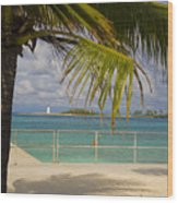 Lighthouse Under Palm In Bahamas Wood Print