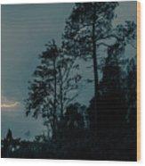 Lighting On The Lake 2 Wood Print