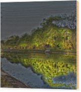 Lighting The Erie Canal Wood Print