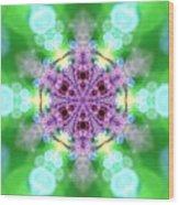 Lightmandala 6 Star 3 Wood Print