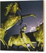 Lightning At Horse World Fine Art Print Wood Print