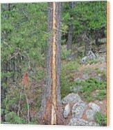 Lightning Strike On Tree Wood Print