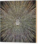 Lightspeed Framework Wood Print