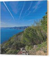 Liguria Paradise Gulf Panorama Wood Print