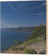 Liguria Paradise Gulf Panorama With Yellow Flowers Wood Print