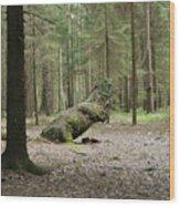 Like A Dinosaur Wood Print