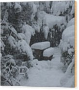 A Snowy Secret Garden Wood Print