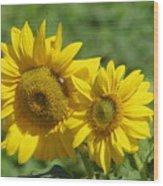 Like Two Smiles In Bloom Wood Print