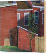 Lilac Bush On Dresden Way Wood Print by Martha Ressler