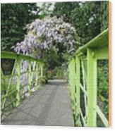 Lilac Colour  Crossing Wood Print