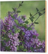 Lilac Enchantment Wood Print