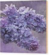 Lilac Spring Wood Print