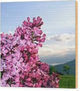 Lilacs And Green Pastures Wood Print