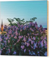 Lilacs And Sunset To Blue Hour Transition Over Gamla Stan In Stockholm Wood Print
