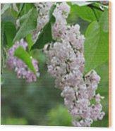 Lilacs In The Rain 6 Wood Print