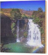 Lili Waterfall  Wood Print