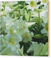 Lilies 11 Wood Print