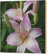 Lilies And Raindrops Wood Print