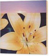 Lilies And Sky 3 Wood Print