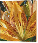 Lilies Art Prints Orange Lily Flowers 2 Gilcee Prints Baslee Troutman Wood Print