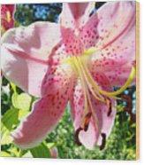 Lilies Art Prints Pink Lily Flowers 2 Giclee Prints Baslee Troutman Wood Print