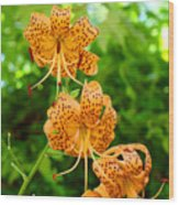 Lilies Art Tiger Lily Flowers Canvas Prints Floral Baslee Troutman Wood Print