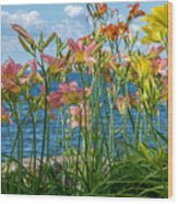 Lilies At The Waterfront Wood Print