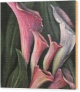 Lilies Calla Oil Painting Wood Print