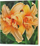 Lilies Collection - 1 Wood Print