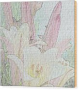 Lilies. Flowers And Buds. Wood Print