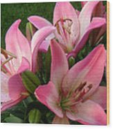 Lilies In Company Wood Print