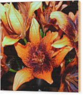 Lilies In The Shadow Wood Print