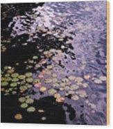 Lilies In The Water Wood Print