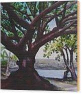 Liliuokalani Park Tree Wood Print