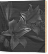 Lillies In Black And White Wood Print