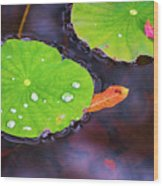 Lillies On Water Wood Print