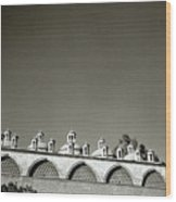 Lilliputian Minarets Wood Print