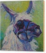 Lilloet - Llama Wood Print